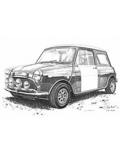 Lamina Mini Cooper - Mike Harbar