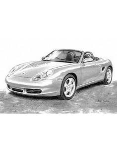 Lamina Porsche Boxster - Mike Harbar
