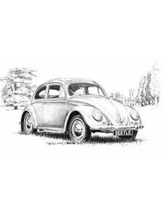 Lamina Volkswagen Beetle - Mike Harbar