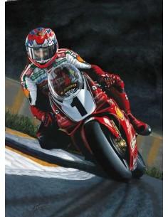 Litografia Superbike Super Champion - Fogarty - Michael Thompson