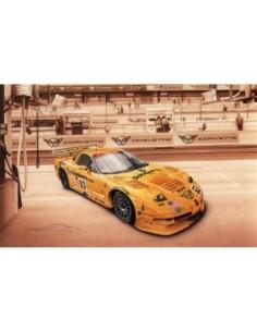 Litografia Corvette C5R Le Mans 2002 - François Bruere