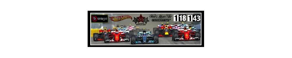Modelos a Escala - Formula 1 - F1