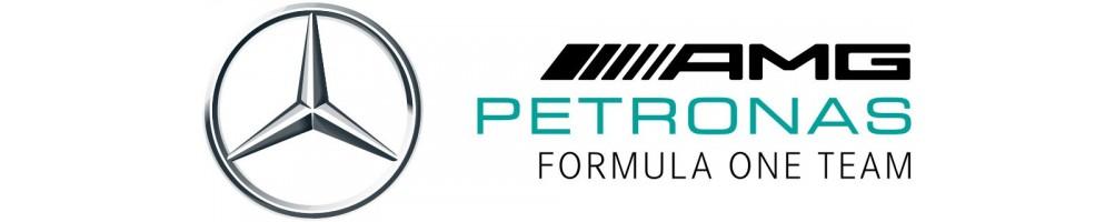 Colección oficial Mercedes AMG Petronas F1 Team